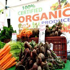 Phân biệt Thực phẩm Hữu cơ và thực phẩm Tự nhiên