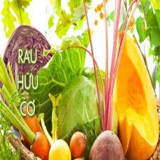 Bí mật dinh dưỡng thú vị từ màu sắc rau quả bạn nên biết